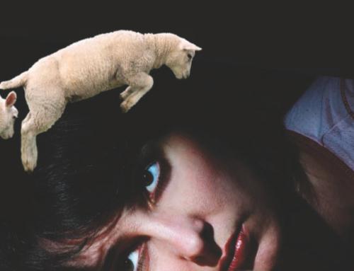 Quand le sommeil perturbe la vie fondation sommeil troubles du sommeil - Trouble du sommeil que faire ...